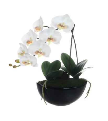 arranjo+de+orquidea+artificial+da+lg+flores+artificiais+patos+de+minas+mg+brasil__9FE927_1